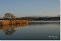 木場潟と白山